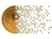 The Evolution of the Bitcoin Economy and Analyzing the Network of Payment Relationships