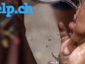 Digitale Spendenplattform letshelp.ch stellt Betrieb ein