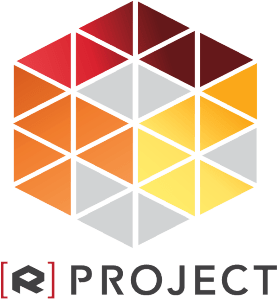 rohinya project