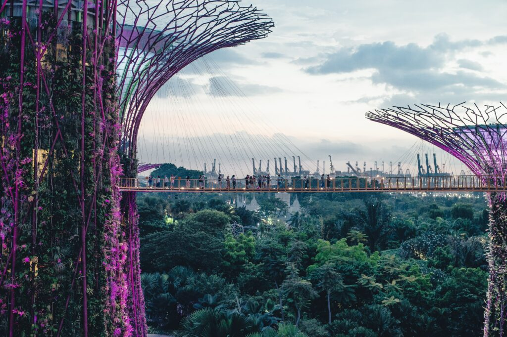 Singapore smart city supertrees