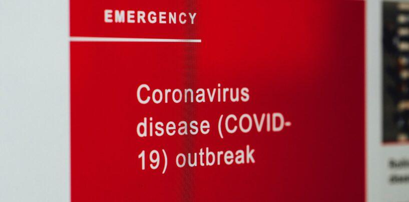 Umfrage: Schweizer Digitalversicherer Kommen Gestärkt aus der Coronakrise