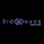 3rd eyes analytics